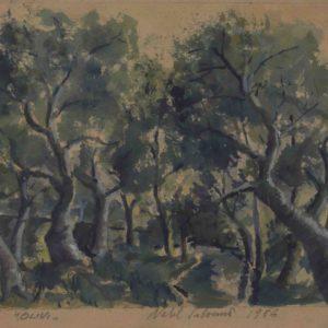 Olivi 1956 17x19 cm