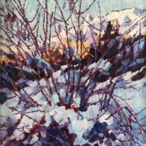 Cespuglio d'inverno 1991
