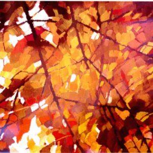Colori di una vite d'autunno 1985