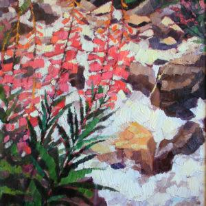 Fiori rossi lungo il torrente Antermont 1989 35x50