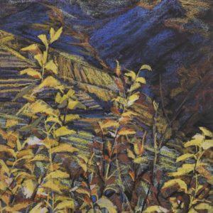 Val di Cembra 1991
